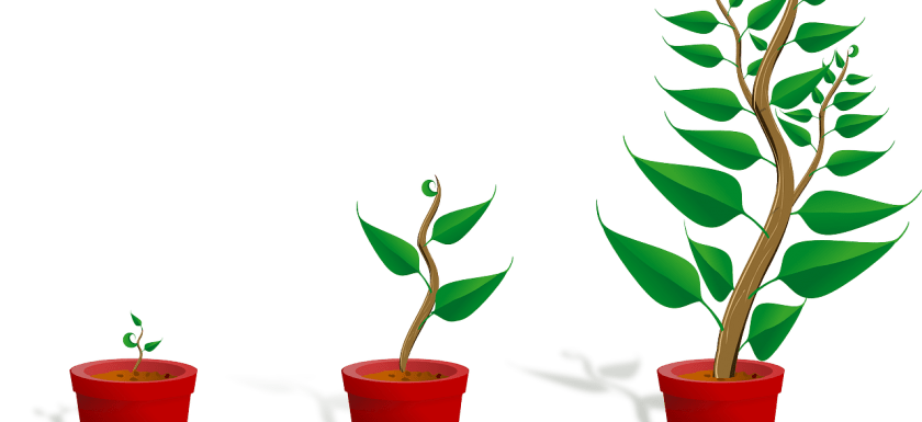 growing saplings illustration demonstrating opportunities to grow